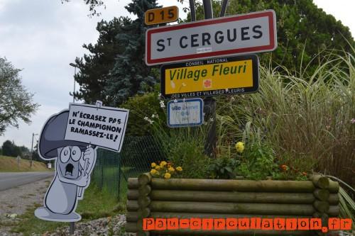 Des-panneaux-de-ralentissement-originaux-dans-un-village-de-Haute-Savoie-champignon