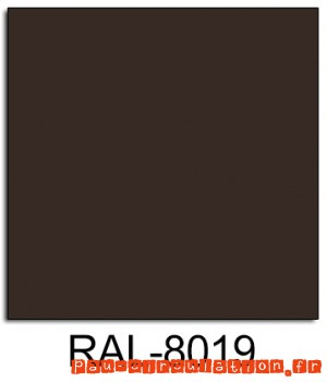 RAL-8019